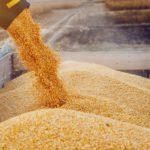 How To Minimize Safety Hazards When Handling Grain