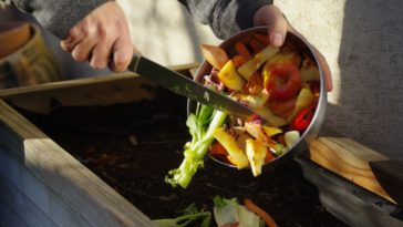 How Composting Works and Why It's Important For Business